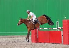 Um cavaleiro salta sobre o obstáculo Fotografia de Stock