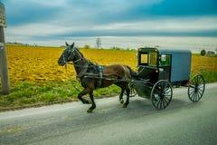 Um cavalo de Amish e cursos do transporte em uma estrada rural no Condado de Lancaster, Pensilvânia imagem de stock