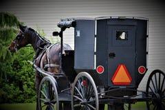 Um cavalo e um carrinho de Amish fotografia de stock royalty free