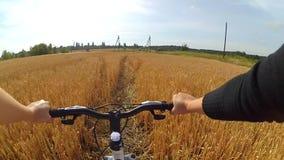 Um ciclista do homem em uma bicicleta monta através de um campo de trigo filme