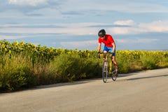 Um ciclista monta em uma bicicleta da estrada ao longo dos campos dos girassóis Imagens de Stock