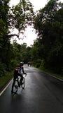 Um ciclista que esperando o elefante pise longe da estrada Fotografia de Stock Royalty Free