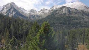 Um cinemático de neve suave e com tiro nas colinas, vista aérea, picos de montanhas nevadas Voando atrás de árvores ou pinheiros vídeos de arquivo