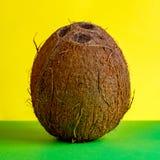 Um coco inteiro está ereto em um verde e em um fundo amarelo Quadro quadrado para o uso da propaganda de frutos tropicais ou foto de stock royalty free