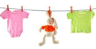 Um coelho e um linho isolados Imagens de Stock