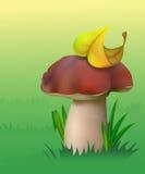 Um cogumelo. ilustração royalty free