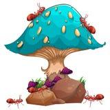 Um cogumelo gigante e uma colônia de formigas Fotos de Stock Royalty Free