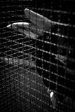 Um conceito de encarcera com emoção da tristeza Imagens de Stock Royalty Free