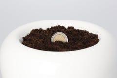 Euro- moeda que cresce do solo Foto de Stock Royalty Free
