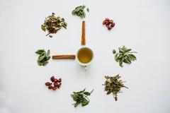 Um conceito ou uma ideia criativa que signifique o tempo do chá Chá erval ou verde útil no centro e em torno do vário secado fotografia de stock royalty free