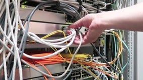 Um coordenador masculino da TI que trabalha em um centro de dados com fileiras de cremalheiras do servidor e de computadores supe vídeos de arquivo