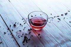Um copo de Carcade Imagem de Stock Royalty Free