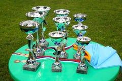 Um copo de prata do troféu do campeão Imagem de Stock
