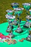 Um copo de prata do troféu do campeão Fotos de Stock