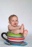 Um copo do bebê Fotografia de Stock
