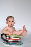 Um copo do bebê Fotos de Stock Royalty Free