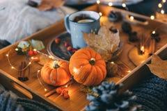 Um copo do chá Composição e abóbora do outono do conforto imagens de stock