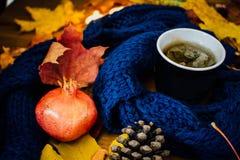 Um copo do chá e a romã e o cone Fotografia de Stock Royalty Free