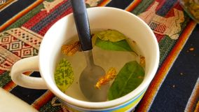 Um copo do chá ou do Mate de Coca da coca em Bolívia fotografia de stock