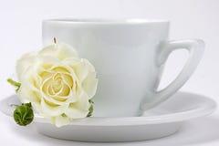 Um copo do coffe com branco levantou-se fotos de stock