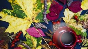 Um copo quente do chá cercado pelas folhas de outono O conceito de Foto de Stock