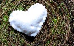 Um coração branco em um fundo do musgo Fotos de Stock