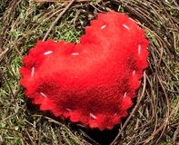 Um coração vermelho de pano em um fundo do musgo Imagem de Stock Royalty Free