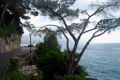 Um corredor corre ao longo do mar Imagem de Stock Royalty Free