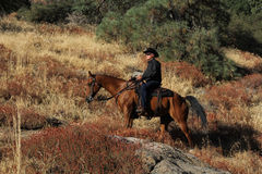 Um cowboy que monta as fugas. imagem de stock