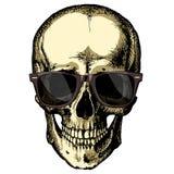 Um crânio humano com vidros em um fundo vazio Fotografia de Stock Royalty Free