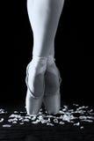 Um dançarino de bailado que está nos dedos do pé nas pétalas cor-de-rosa com backg preto Foto de Stock