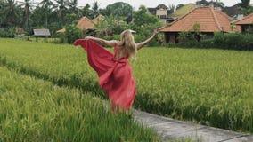 Um dançarino novo delgado roda em uma saia longa fora em um terraço do arroz na solidão O trem do vestido é desenvolvido video estoque