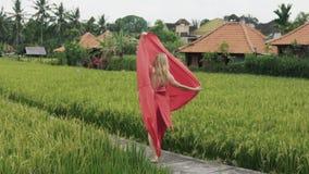 Um dançarino novo só anda ao longo do terraço do arroz em um vestido de seda longo vermelho, danças, aumenta sua saia de fluxo, q video estoque