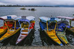 Um ` de Shikara do ` da chamada do barco é uma da atividade interessante deve ser tentativa pelo turista Imagens de Stock Royalty Free