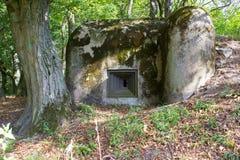 Um depósito militar velho na floresta 2 Foto de Stock Royalty Free