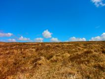 Um deserto bonito da montanha fotografia de stock