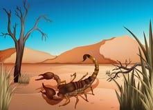 Um deserto com um escorpião ilustração stock