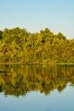 Um dia bonito para ver a reflexão das árvores no lago em John S Taylor Park no Largo, Florida Fotos de Stock Royalty Free