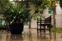 Um dia chuvoso Foto de Stock Royalty Free