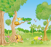 Um dia da floresta Imagem de Stock