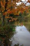 Um dia da queda pela lagoa Foto de Stock Royalty Free