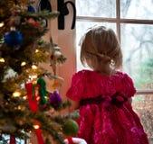 Um dia de inverno Imagem de Stock