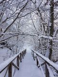 Um dia de inverno frio fotos de stock