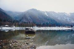 Um dia de inverno frio pelo lago fotos de stock royalty free