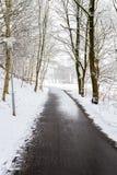 Um dia de invernos fotos de stock royalty free