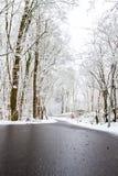 Um dia de invernos imagens de stock royalty free