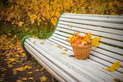 Um dia do outono no parque Imagens de Stock Royalty Free
