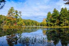 Um dia do outono no parque estadual da cavidade de Bigelow fotografia de stock