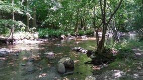 Um dia em The Creek fotos de stock royalty free