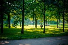 Um dia ensolarado do sommer no parque Fotografia de Stock Royalty Free